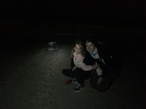 Schildpaddenstrand Jaz al Rinz 4